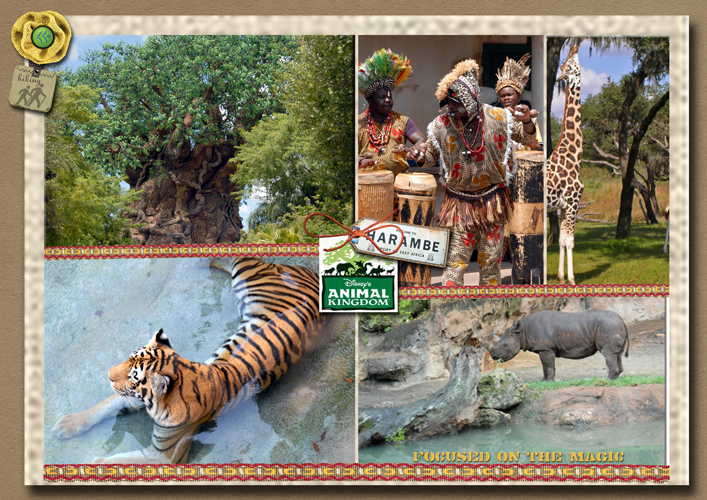 Focused on the Magic Animal Kingdom Collage