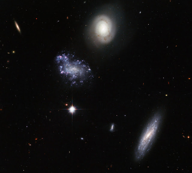 Hickson Compact Galaxy Group 59