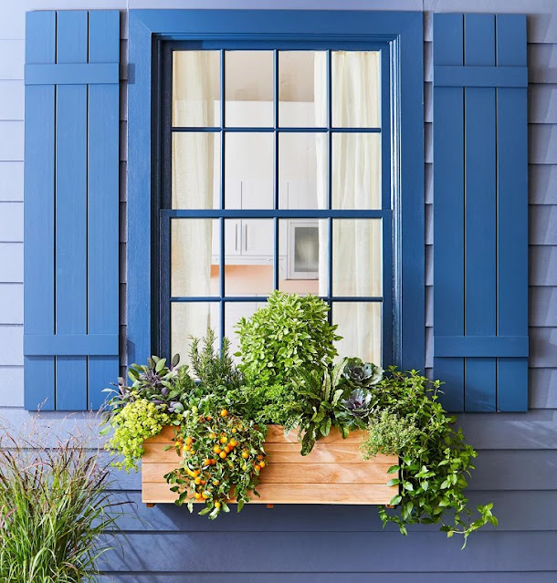 Curb Appeal with Install Window Boxes