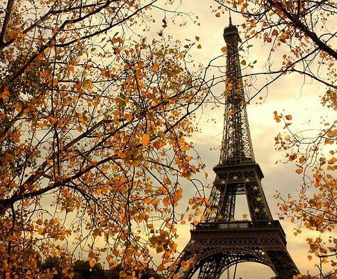 autumn, jesień, halloween in hogwart, sweater weather, rain, leafs, gold, pupmpkin, friends, thanksgiving, turkey, paris,