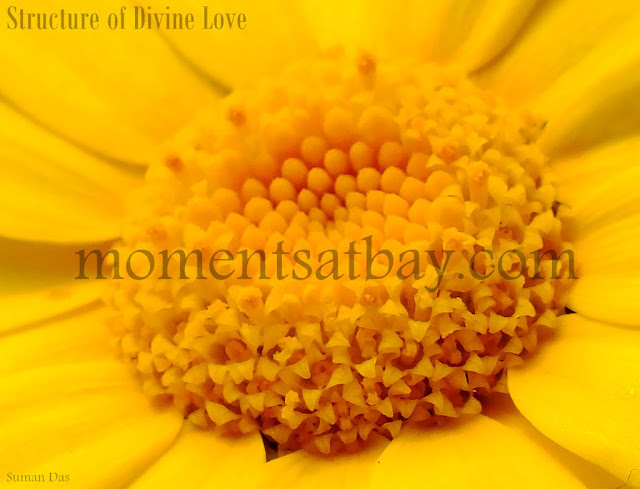 Structure of Divine Love momentsatbay