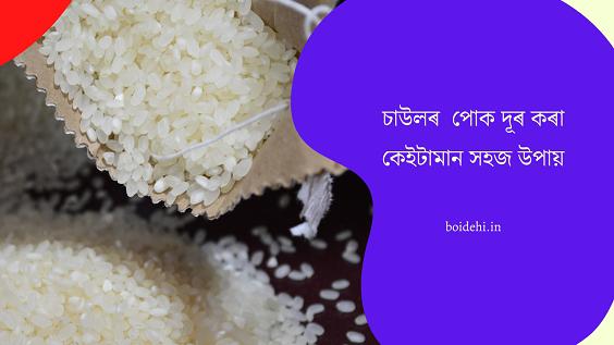 Assamese Rice | Assamese Lifestyle Tips |