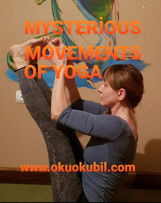 Yoga'nın Gizemli Ve Garip Pozları 2020