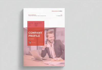 contoh company profile media online