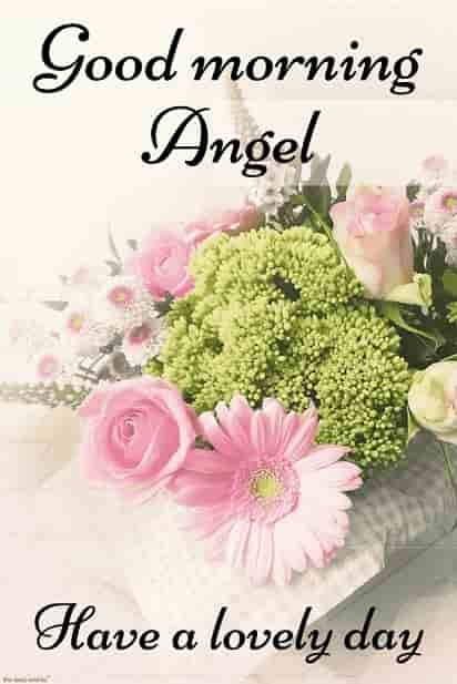 good morning angel hd images with flowers have a lovely day