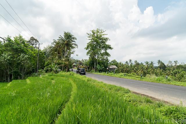 Route d'Antosari à Pemuteran - Bali