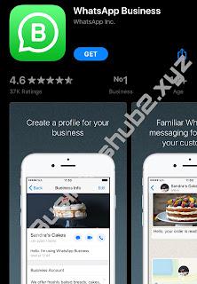 Use of WhatsApp business