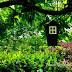 Titkos kert - csodakert a zöldkapun túl