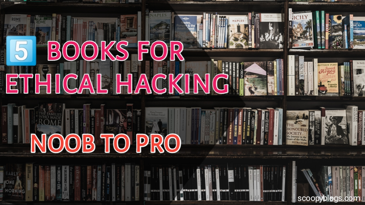 Books for learning hacking