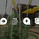 5 apps para tu smart phone que te ayudaran en el huerto