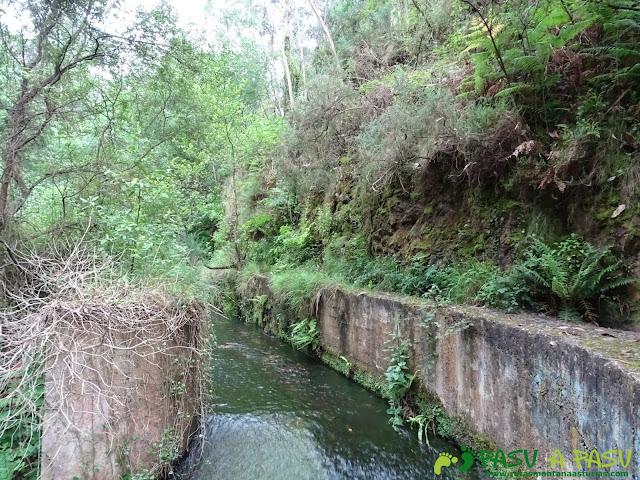 Canal en la Senda del Escañorio