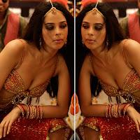Mallika sherawat hot navel show