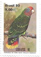 Selo papagaio-de-cara-roxa