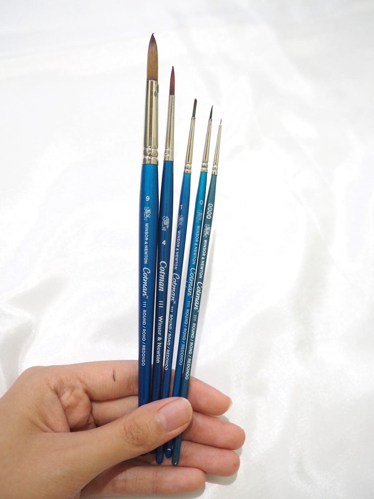 selain memakai brush winsor and newton aku juga pakai koi water brush fine tip and medium tip large tube kenapa karena lagi lagi murah dari pada brand