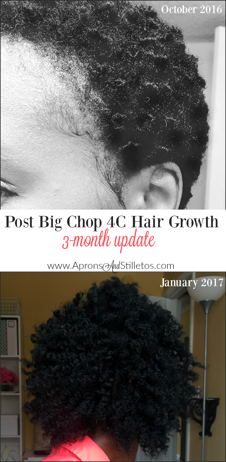 Post Big Chop 4C Hair Growth | 3 Month Update