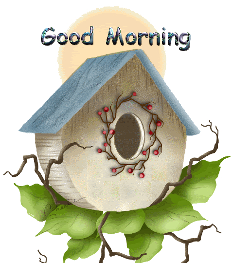 good morning have a peaceful day