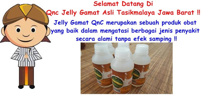 Qnc Jelly Gamat Asli Tasikmalaya Jawa Barat