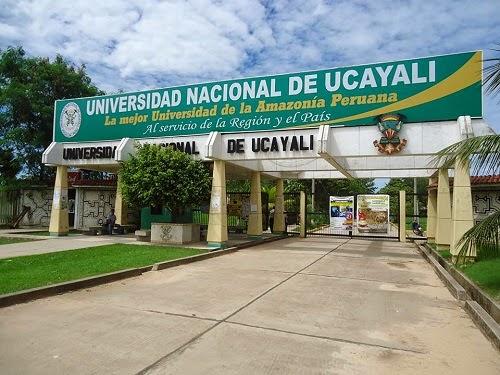 Universidad Nacional de Ucayali - UNU