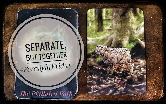 Separate, But Together #ForesightFriday