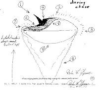 Portage County UFO By Deputy Spauer.1
