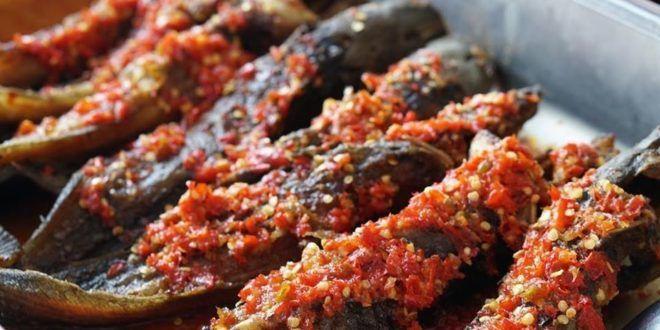6 Perbezaan Jenis Ikan Keli Makan Bahan Haram vs Halal