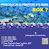 Pescados & Frutos do Mar Box 7