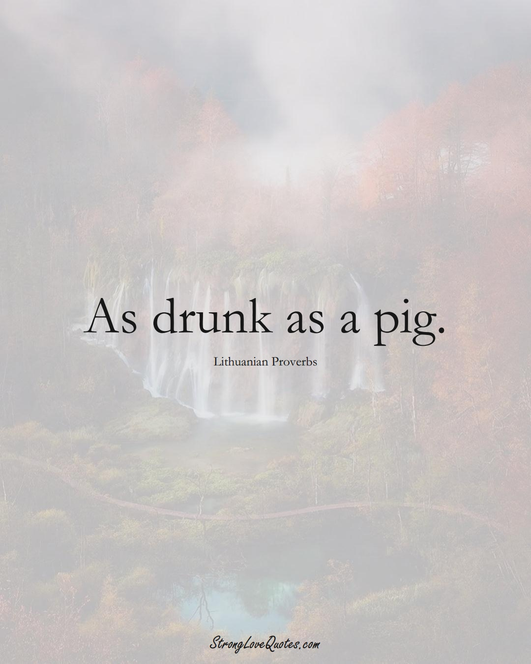 As drunk as a pig. (Lithuanian Sayings);  #AsianSayings