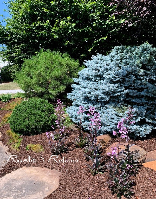 Lake County Indiana Master Gardener Garden Walk - House 3 Tour of gorgeous year round color and texture.