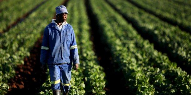Devenir un agriculteur