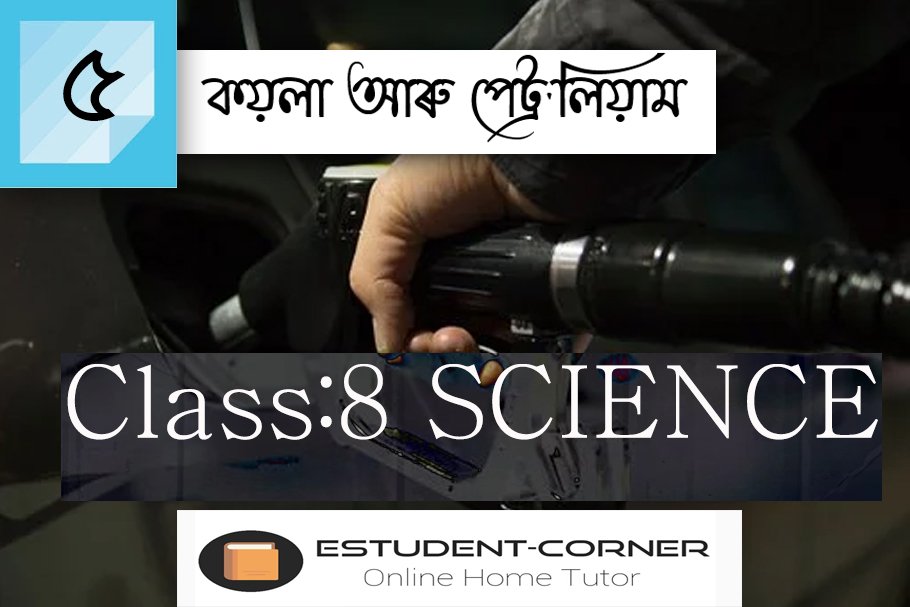 Class 8 || SCIENCE || Lesson 5 || কয়লা আৰু পেট্ৰ'লিয়াম || SCERT Assamese Science Book Fully Solved
