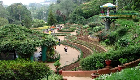 Tourist places of Ooty - OOTY TOURIST PLACES TO VISIT in Hindi & English