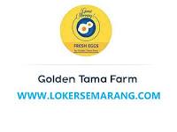 Lowongan Kerja Driver dan Tenaga Packing di Golden Tama Farm Semarang