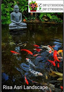 gambar kolam ikan koi, kolam hias, kolam minimalis, kolam batu batuan