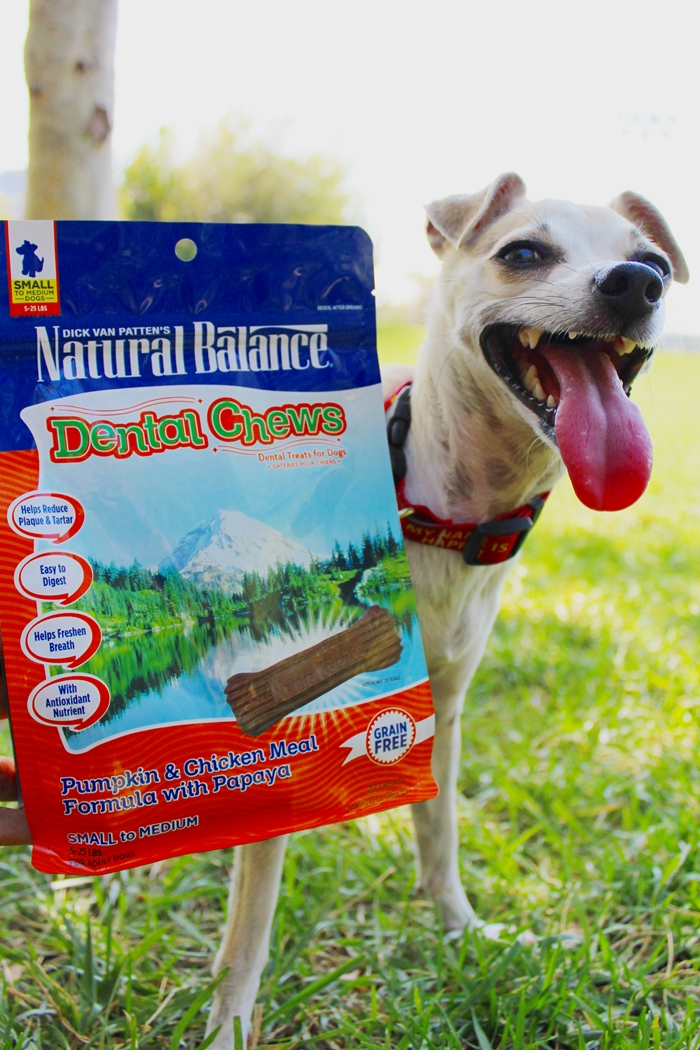 Natural Balance Dental Chews Review