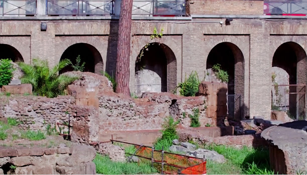 Place where Julius Caesar was stabbed to death (under the tree)