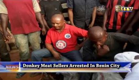 donkey meat sellers arrested benin edo state