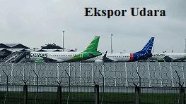 Jasa Pengiriman Barang Ekspor Ekspor Melalui Udara