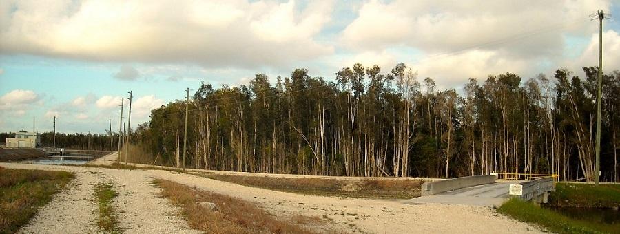 Puente hacia el Emergency Basin C-4