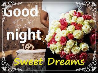 good night sweet dreams white rose