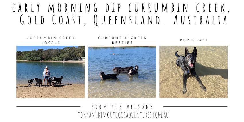 Morning Dip Currumbin Creek Gold Coast