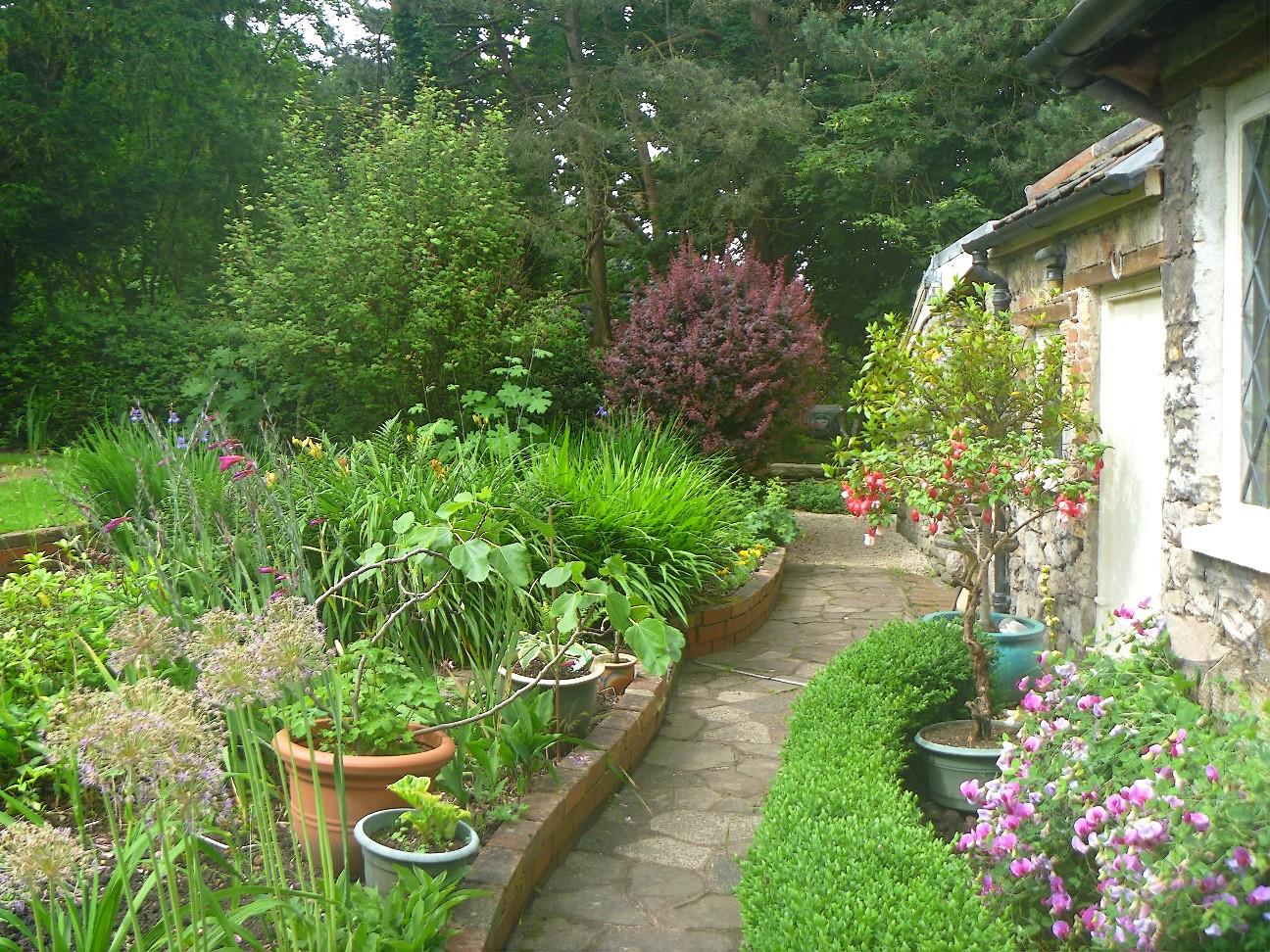 hablemos de jardines los peque os jardines ingleses