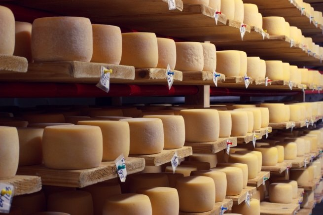 Cheese manufacturing