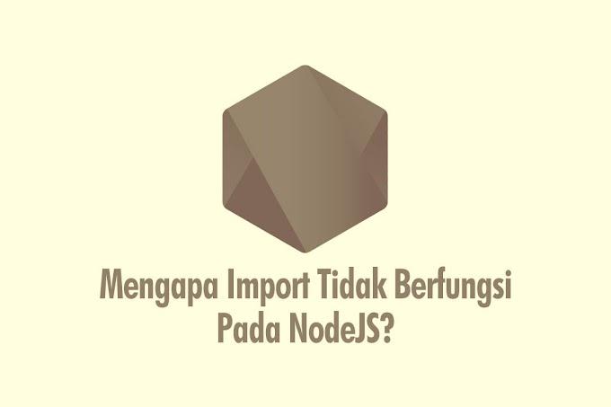 Mengapa Tidak Bisa Import Package Pada NodeJS? Ini Solusinya!