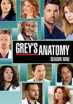 Grey's Anatomy 9ª Temporada Torrent – WEB-DL 720p Dual Áudio