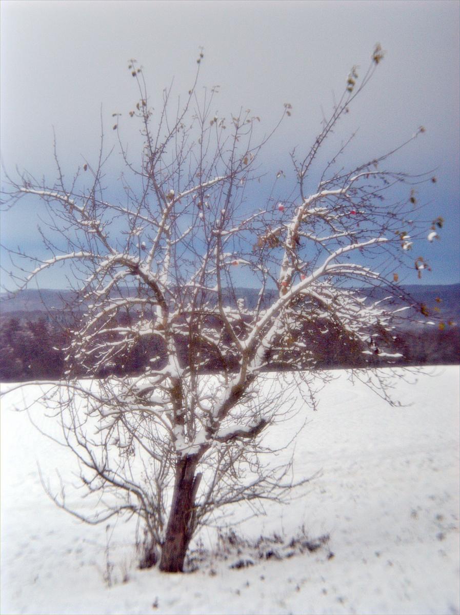 Schneefeeling — Winterstimmung - Ein zweiter Versuch