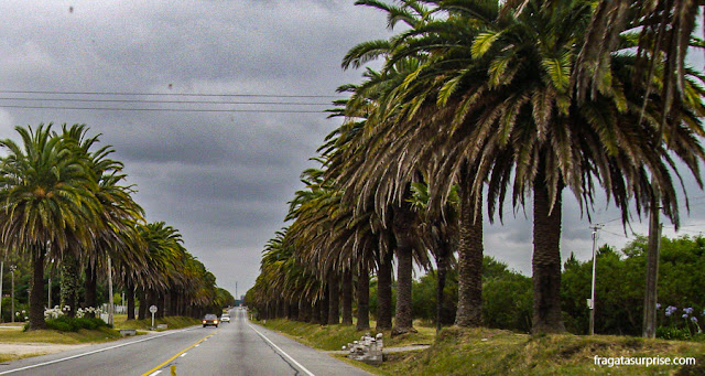 Chegada a Colonia del Sacramento pela Ruta 1, Uruguai