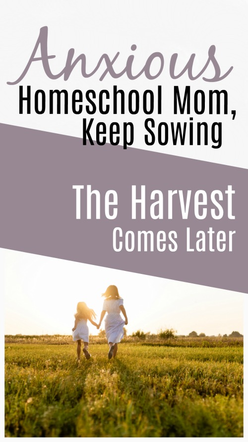 Anxious Homeschool Mom, Keep Sowing. The Harvest Comes Later #homeschool