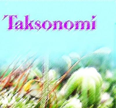 Taksonomi ialah kata yang kerap ditemukan dalam ilmu biologi Gobekasi:  Pengertian Taksonomi, Tujuan, Contoh, Tingkatan Takson dalam Biologi