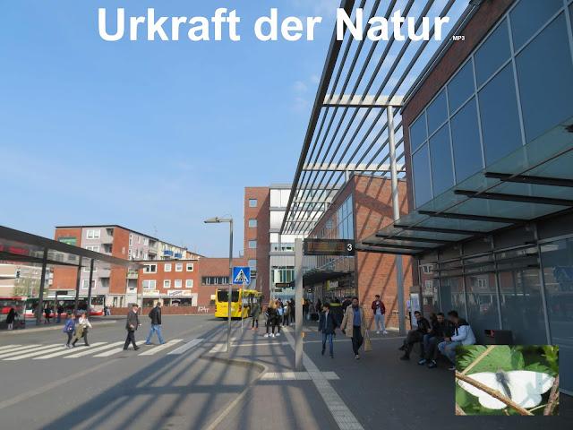 https://utopia.de/kostenloser-oeffentlicher-nahverkehr-luxemburg-116979/