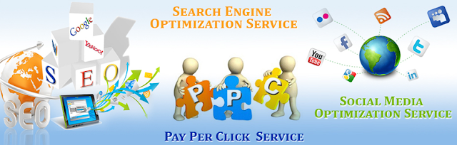 SEO Services Provider Company in India, SEO Company in India, best seo company in India